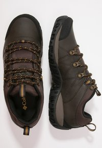 Columbia - PEAKFREAK VENTURE WATERPROOF - Obuwie hikingowe - dark brown - 1