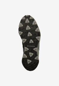 Columbia - WAYFINDER OUTDRY - Hikingskor - black lux - 4