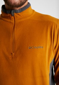 Columbia - KLAMATH RANGE HALF ZIP - Sweat polaire - burnished amber/shark - 4