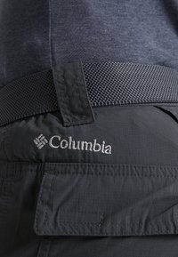 Columbia - SILVER RIDGE CARGO PANT - Outdoor trousers - carbon - 6
