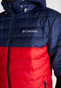 Columbia - POWDER LITE HOODED JACKET - Winterjas - mountain red/collegiate navy - 3