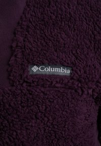 Columbia - WINTER PASS FULL ZIP - Fleecejakker - black cherry/shark - 6