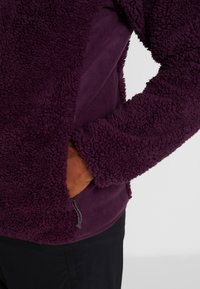 Columbia - WINTER PASS FULL ZIP - Fleecejakker - black cherry/shark - 4