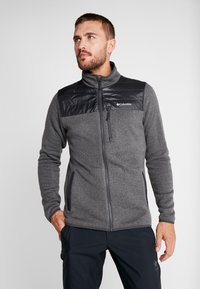 Columbia - CANYON POINT FULL ZIP - Giacca in pile - city grey/shark - 0