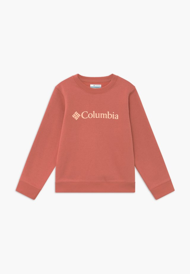 PARK CREW - Sweater - dark coral