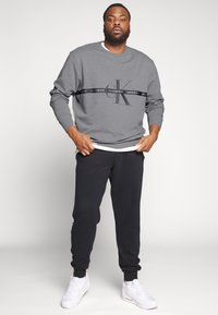 Calvin Klein Jeans Plus - PLUS TAPING THROUGH - Sweatshirt - mid grey heather/poseidon - 1
