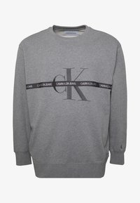 Calvin Klein Jeans Plus - PLUS TAPING THROUGH - Sweatshirt - mid grey heather/poseidon - 4