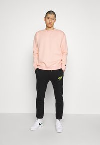 Common Kollectiv - FLASH CREW NECK SWEATER - Sweater - dusty pink - 1