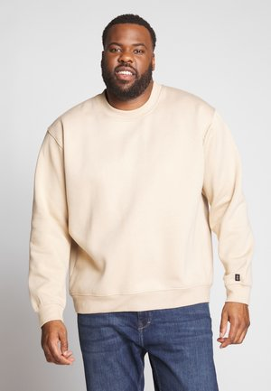 PLUS FLASH CREW NECK SWEATER - Collegepaita - stone