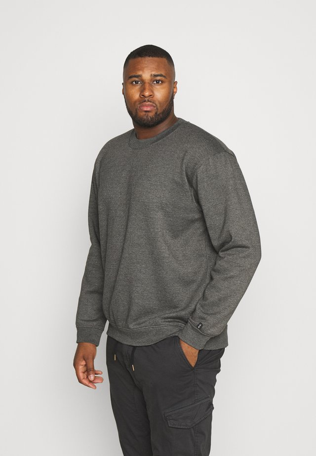 PLUS FLASH CREW NECK  - Sudadera - charcoal