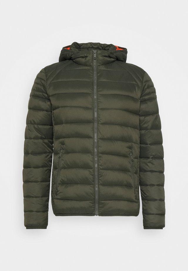MAN JACKET ZIP HOOD - Winter jacket - oil green