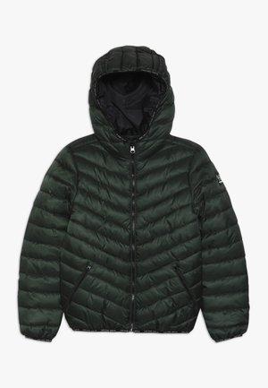 KIDS STAFF  - Zimní bunda - olive