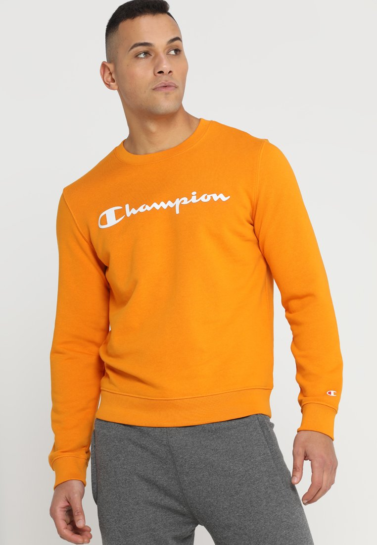 Champion - CREWNECK - Sweater - arc