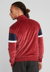 Champion - Sweatshirt - red/navy/white - 2