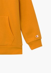 Champion - LEGACY AMERICAN CLASSICS HOODED - Mikina s kapucí - yellow - 4