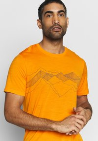 Icebreaker - TECH LITE CREWE PEAK PATTERNS - T-shirts print - sun - 4