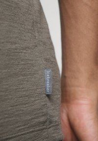 Icebreaker - TECH LITE CREWE TETONS SALMON - T-shirts print - driftwood - 5