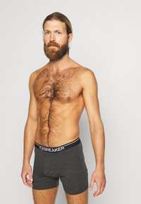 Icebreaker - MENS ANATOMICA BOXERS - Panties - jet heather - 0