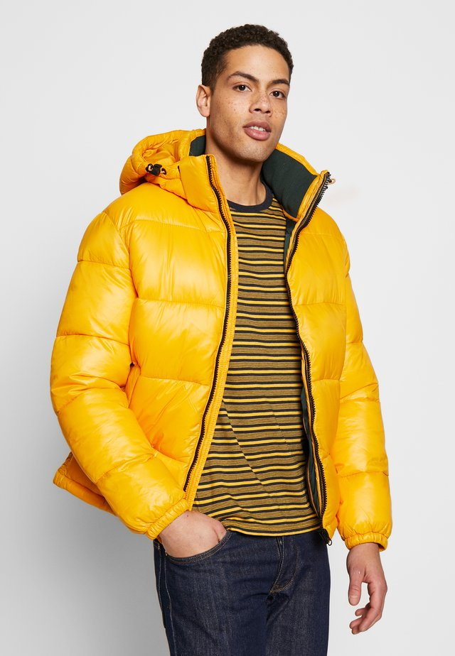 PUSNOW - Winter jacket - yellow