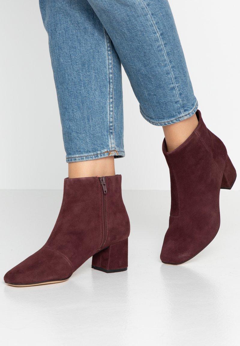Clarks - FLORA - Ankle boots - dark purple