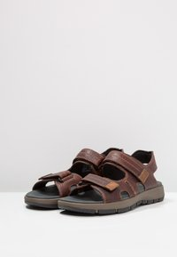 Clarks - BRIXBY SHORE - Walking sandals - marron foncé - 2