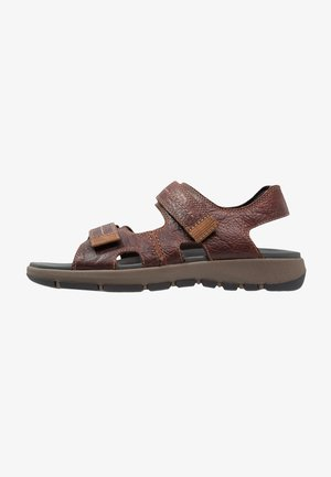 BRIXBY SHORE - Walking sandals - marron foncé