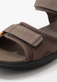 Clarks - STEP BEAT SUN - Chodecké sandály - brown - 5