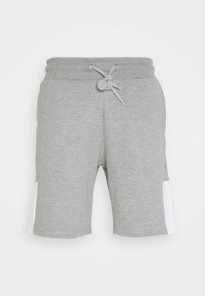 SCRIPT SIDE PANELLED  - Trainingsbroek - grey