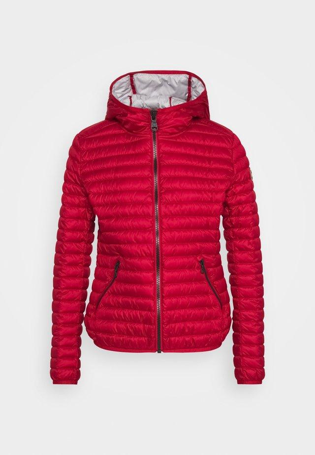 LADIES JACKET - Daunenjacke - red velvet/cold