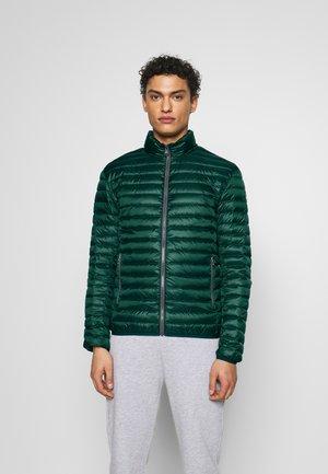 MENS JACKET - Down jacket - botanical