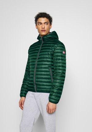 ACKET - Down jacket - botanical / light stee