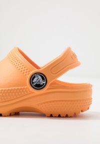 Crocs - CLASSIC - Chanclas de baño - cantaloupe - 5