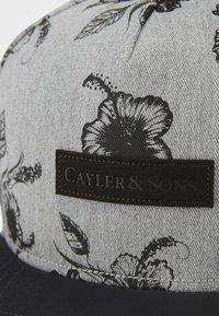 Cayler & Sons - Cap - gry/gry - 3