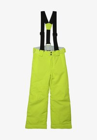 Dare 2B - OUTMOVE PANT - Snow pants - citron lime - 5