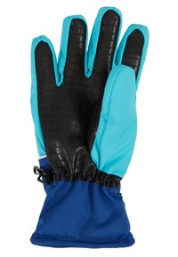 DC Shoes - FRANCHISE GLOVE - Gants - scuba blue - 2