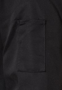 Dickies - EISENHOWER - Light jacket - black - 5