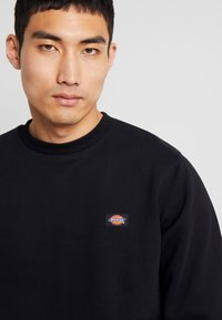 Dickies - NEW JERSEY - Sweater - black - 4