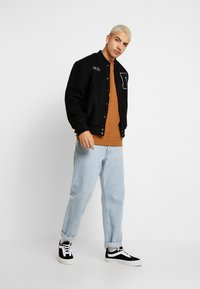 Dickies - FAIRVIEW - Bluza - brown duck - 1
