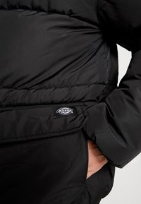 Dickies - OLATON - Winterjas - black - 4