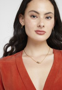 DKNY - PAVE DOUBLE OVAL LINK PENDANT SET - Earrings - gold-coloured - 1