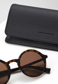 Dolce&Gabbana - Solbriller - havana/brown - 2