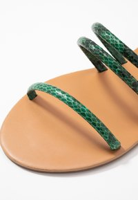 Dorothy Perkins Wide Fit - WIDE FIT TUBULAR  - Sandaler - green - 2