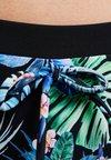DORINA CURVES - KUTA HIPSTER - Swimming shorts - blue