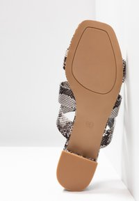 Dorothy Perkins - STORMY - Pantofle - multicolor - 6