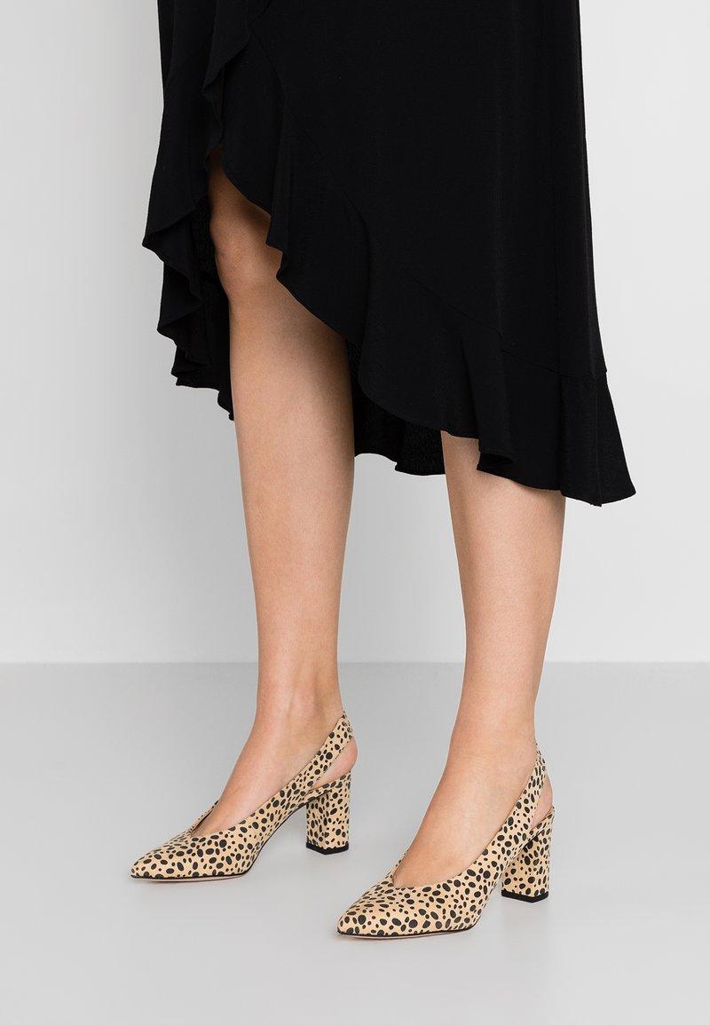 Dorothy Perkins - EVERLEY - Classic heels - multicolor