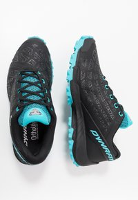 Dynafit - TRAILBREAKER EVO GTX - Běžecké boty do terénu - asphalt/silvretta - 1