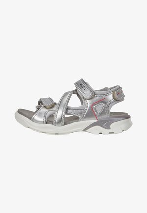 ECCO BIOM RAFT - Walking sandals - alusilver