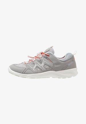 TERRACRUISE - Hiking shoes - silver grey/silver metallic