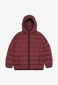Ecoalf - ASPEN - Winter jacket - raspberry - 2