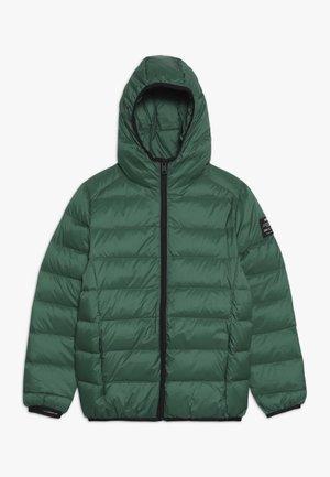 ASPEN - Zimní bunda - green